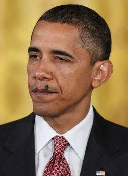 Obama's Fly